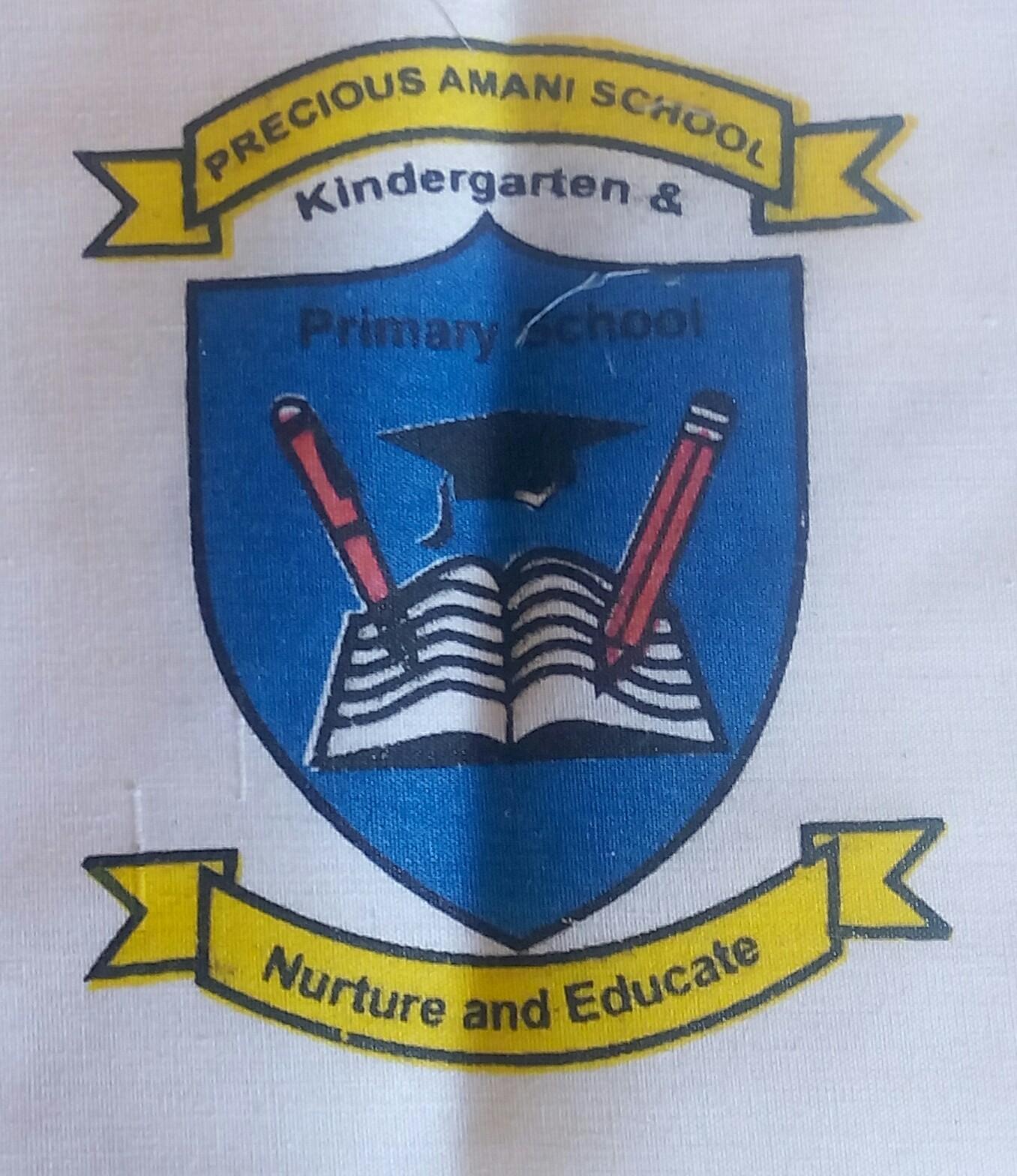 Precious Amani School