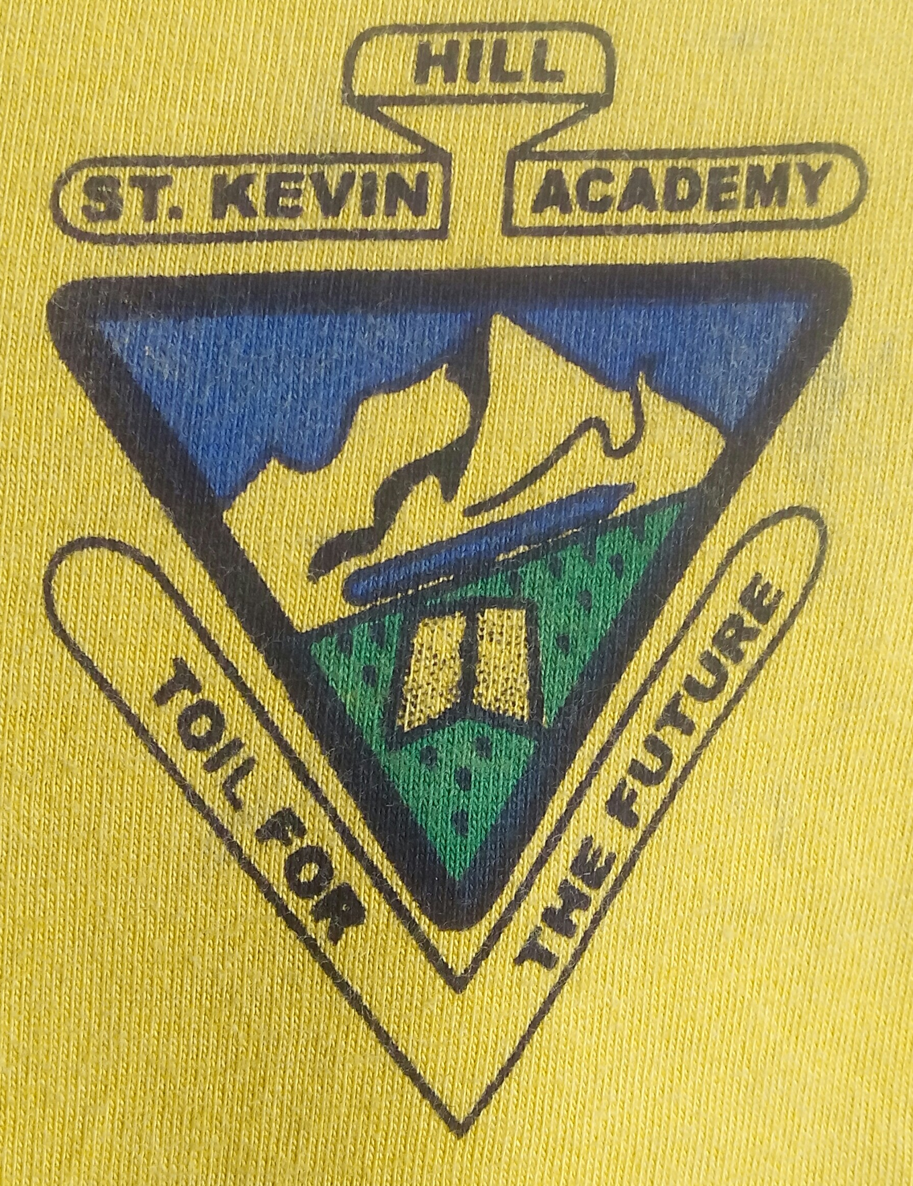 Kevin Hills Mishomoroni