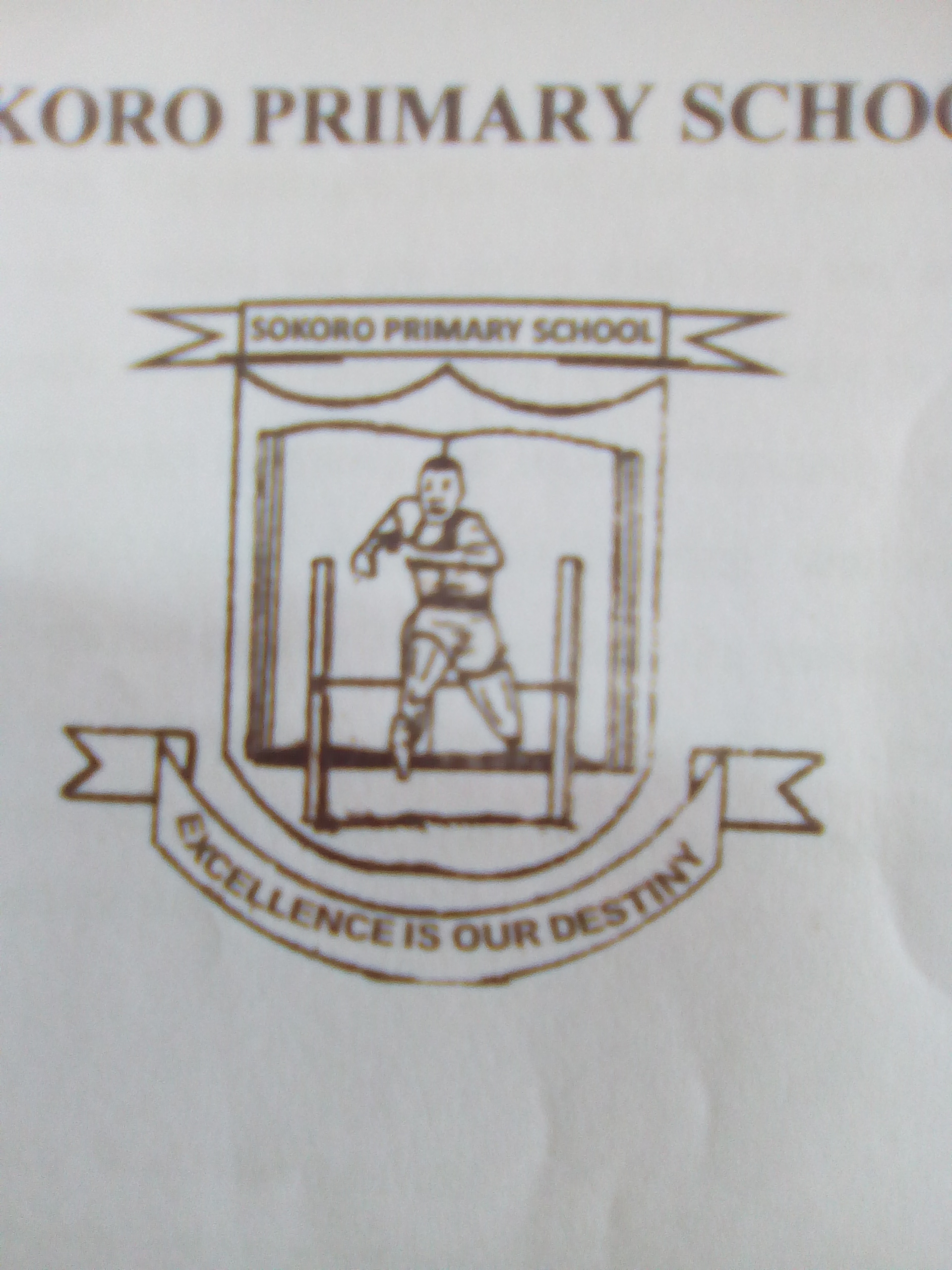 Sokoro Primary School logo